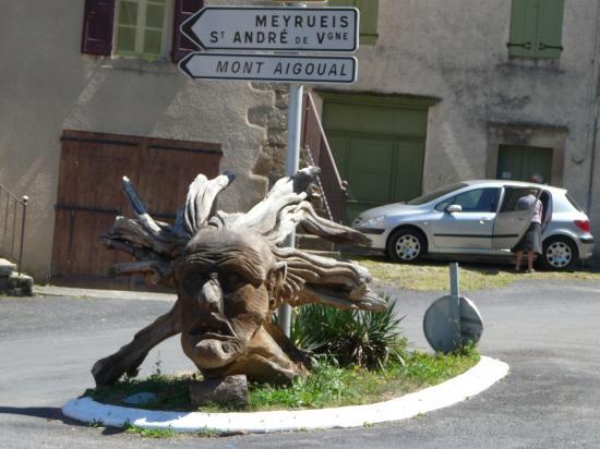 autre rencontre insolite sur le circuit vélo de la corniche des Cévennes par Rousses ( Lozère)