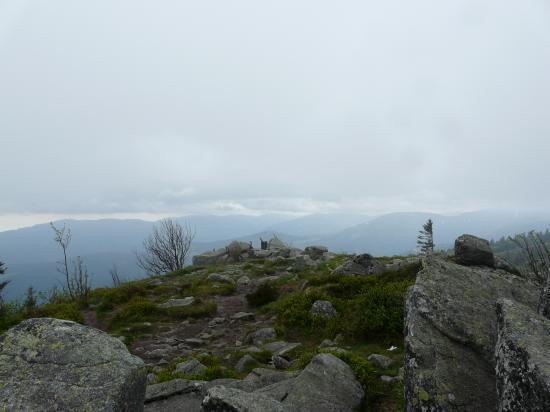 le haut des rochers du Tanet (88-schlucht)