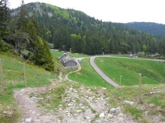 Ferme auberge - station de ski - départ via ferrata - Le tanet (88)