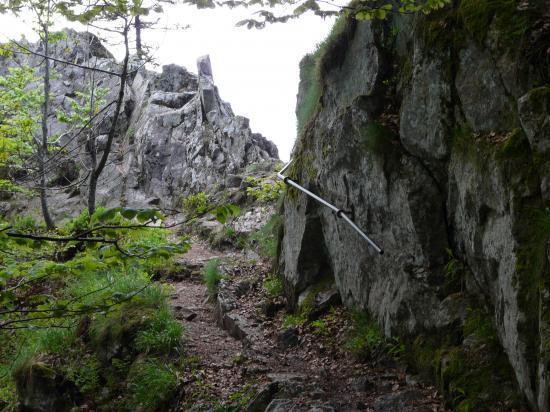 le début du sentier des roches à la Schlucht (88)