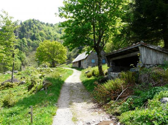 ferme auberge et refuge dans le vallon du frankental (Hohneck)