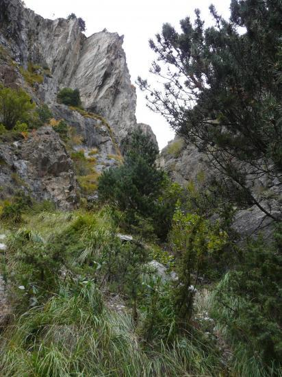 "le site de la via ferrata ""canal del Mora"" à Canigo"
