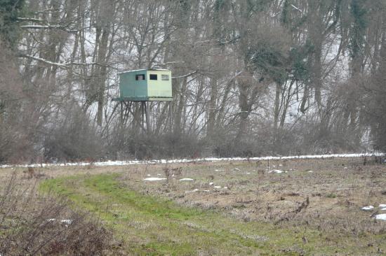 cabane de chasseur sur pilotis dans les vallon des près entre la deuille d 'Ochey et Thuilley