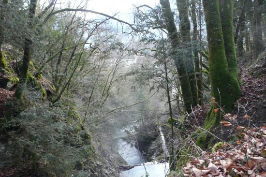 le torrent des cascades tout près d' Angon
