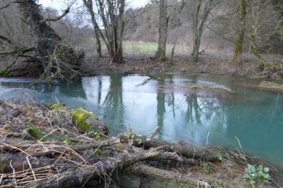 la deuille de Crézilles, de l' eau calme au courant vif !