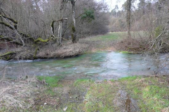 Un peu plus loin la  rivière de la deuille de Crézilles a effacé le chemin !