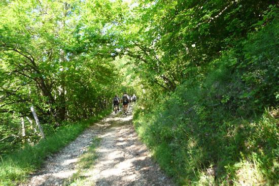 les premières rampes dans la montée au Nivolet ... militaires en vue !