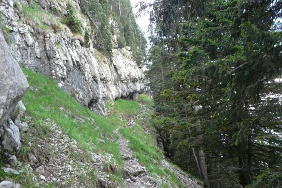 le chemin entre le habert et la cheminée de chamechaude
