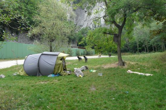 les tentes des sans abris ... les chiens ... dans le parc d' accés de la via de la bastille