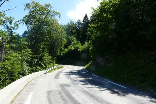 dans la montée d' Alpe du grand Serre
