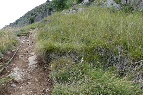 sentier de liaison vers la deuxième partie de Poingt Ravier