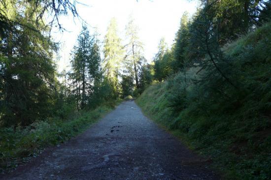 chemin de départ de la via ferrata de la cascade aux Orres