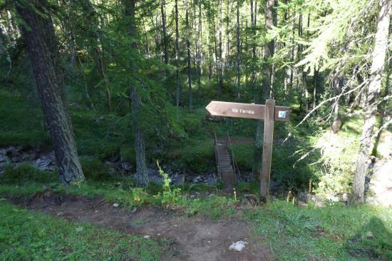 le chemin d'accés pittoresque de la via de la cascade aux Orres