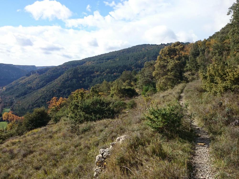 Agréable cheminement au dessus de la vallée de la Vis