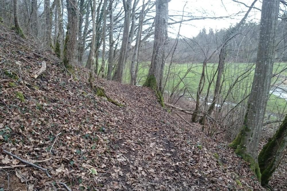 Chemin forestier le long de la Bouvade avant de remonter vers Bicqueleyen direction de la deuille d' Ochey