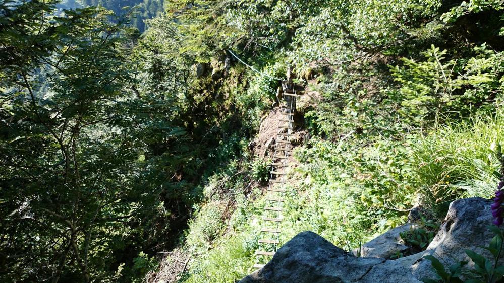 Une petitepasserelle en passant dans la via du Capucin pour admirer Le Mont Dore à ses pieds !