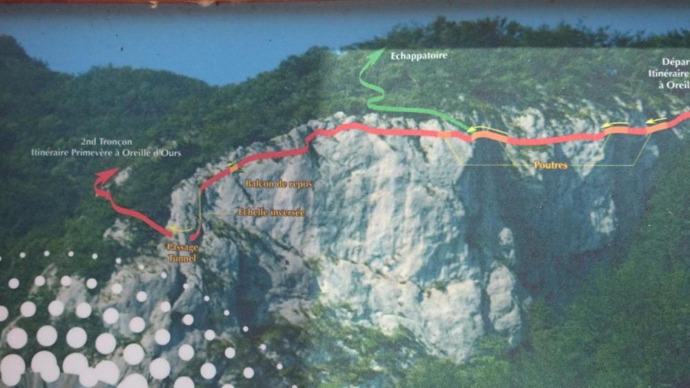 Itinéraire Primevère à Oreille d 'Ours