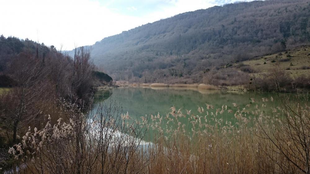 Le lac de Venne