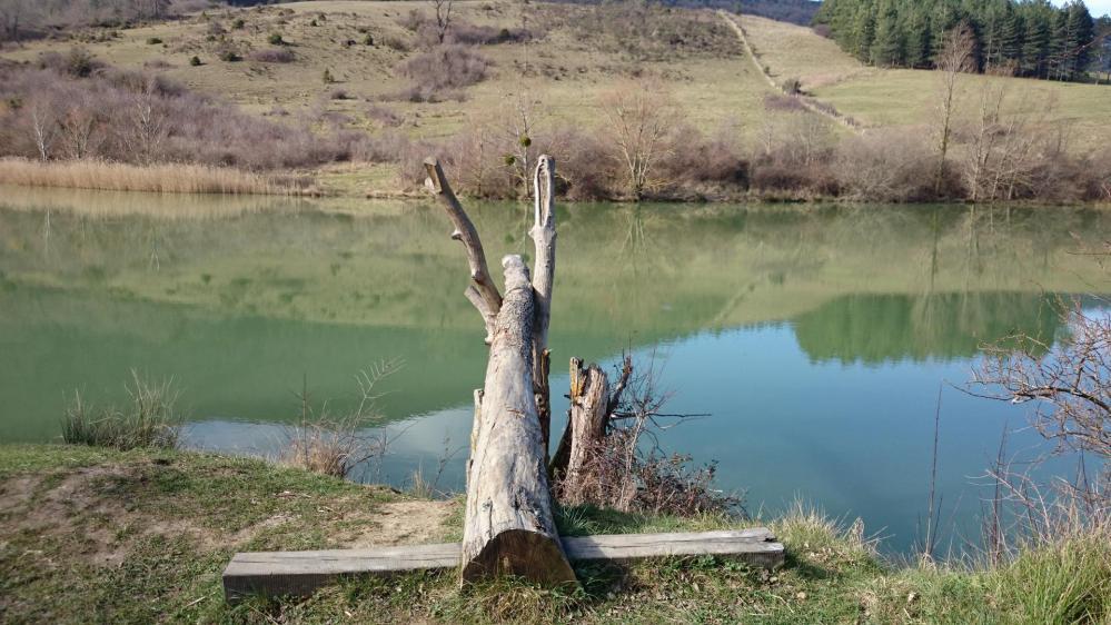 Le lac de Venne, le plongeoir des jeunes du village !