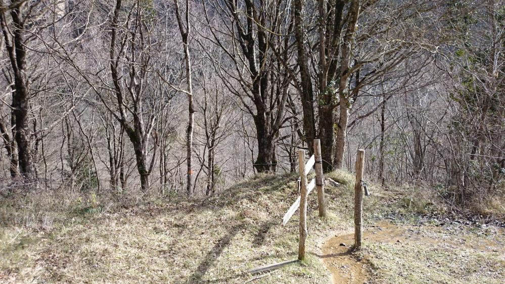 Le cheminement reste en sous bois