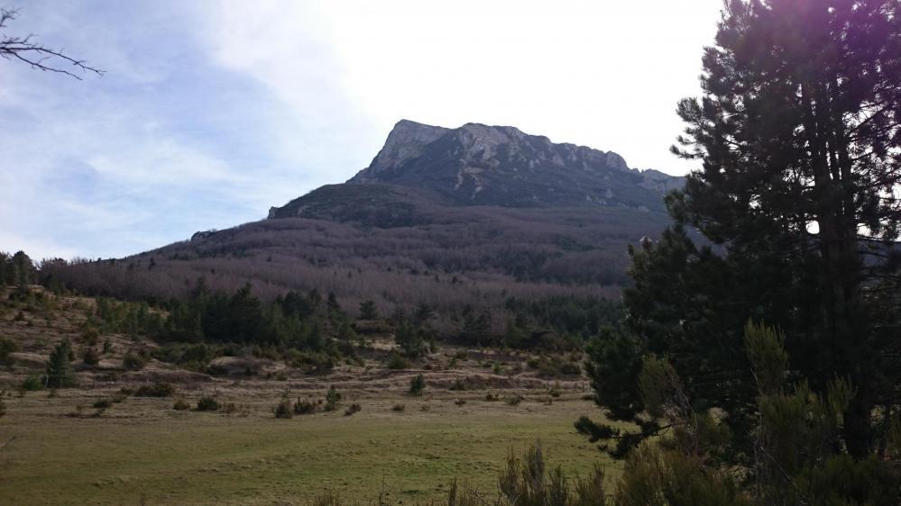 Pech de Bugarach ...vue depuis le col du Linas