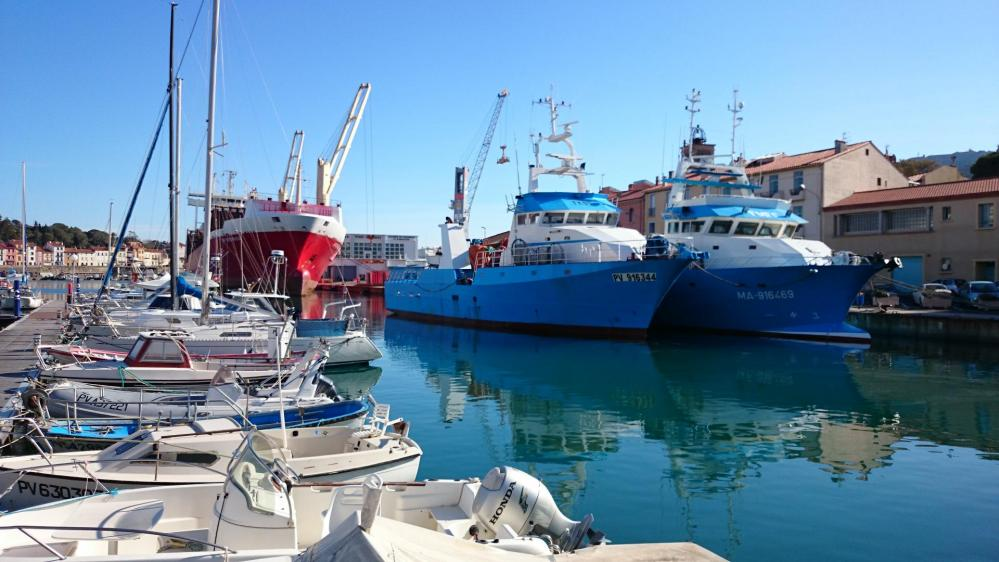Le port de Port Vendres