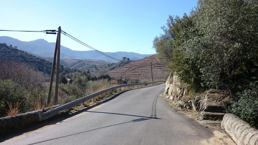 La route du col de Banyuls