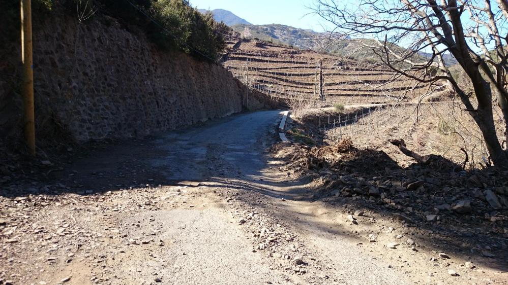 Col de Banyuls côté français ... route dégradée est un mot faible ! c'est un chemin de terre !