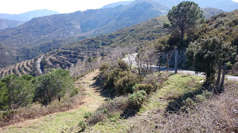 Col de Banyuls côté français ... dernier kilomètre !