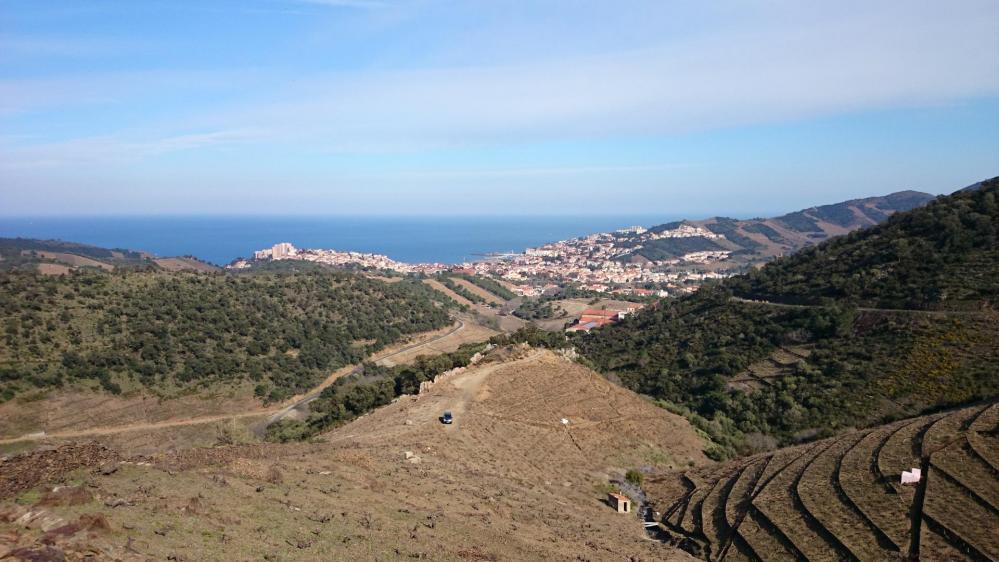 Banyuls vue depuis la route qui mène à la tour Madeloc