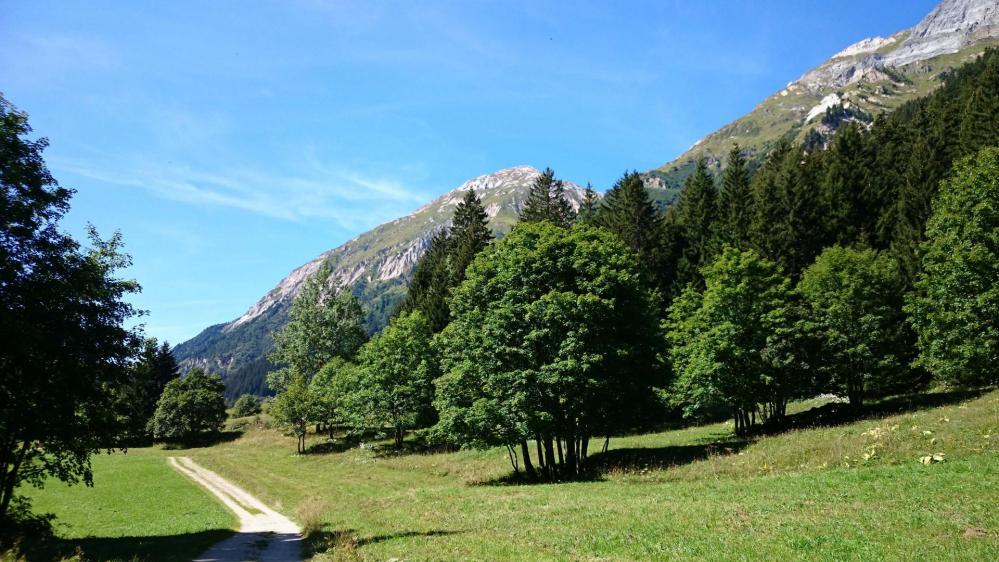 Vallon de Chavière sous le <petit Mont Blanc