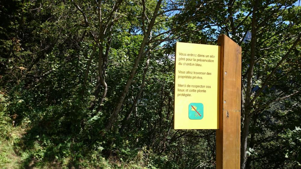 Zone protégée du Chardon bleu