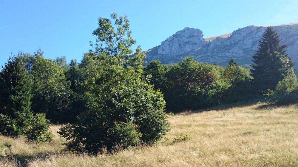 La dent des Portes , direction de la montée vers le Mont  Trélod