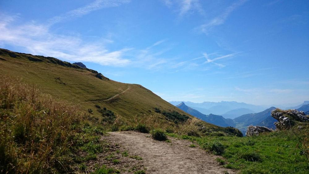 Paysage lumineux et reposant en direction du Mont Trélod