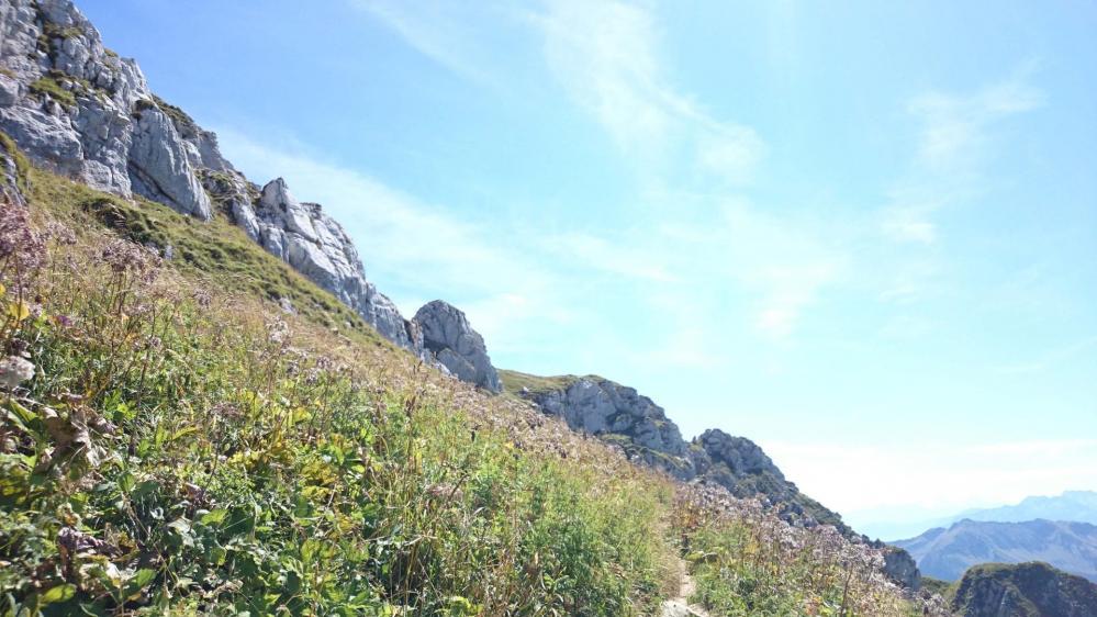 Sous les barres rocheuses du Mont Trélod