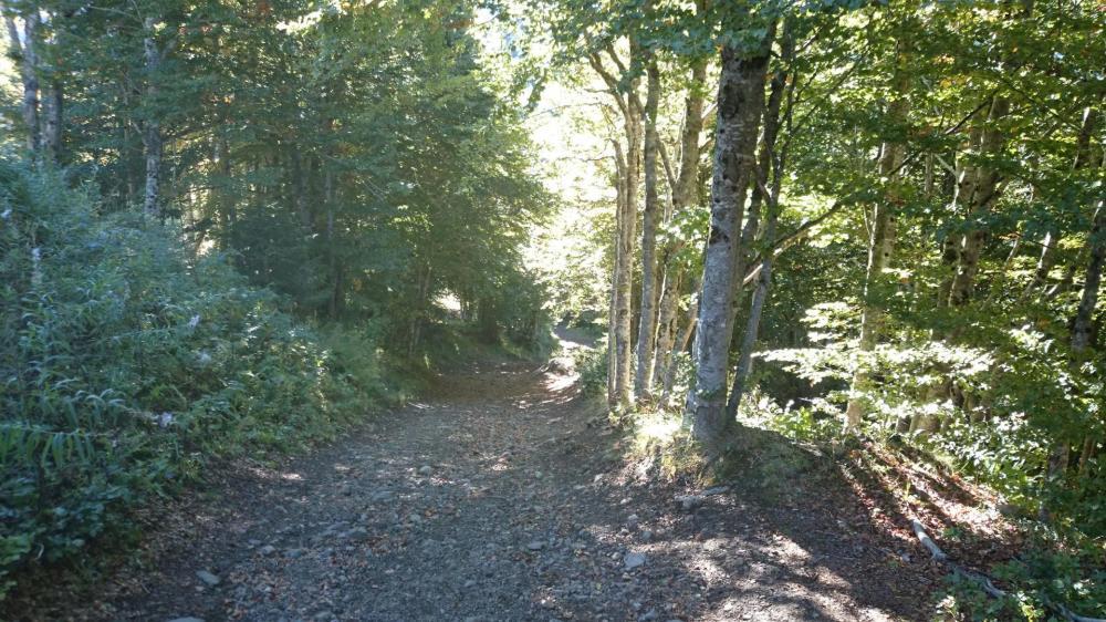 Départ depuis Font d'Alagnon vers le col de Rombière