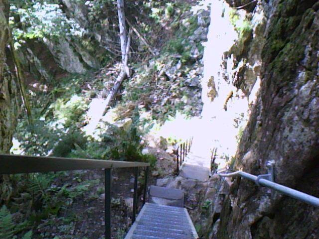 les escaliers du Hirschsteine