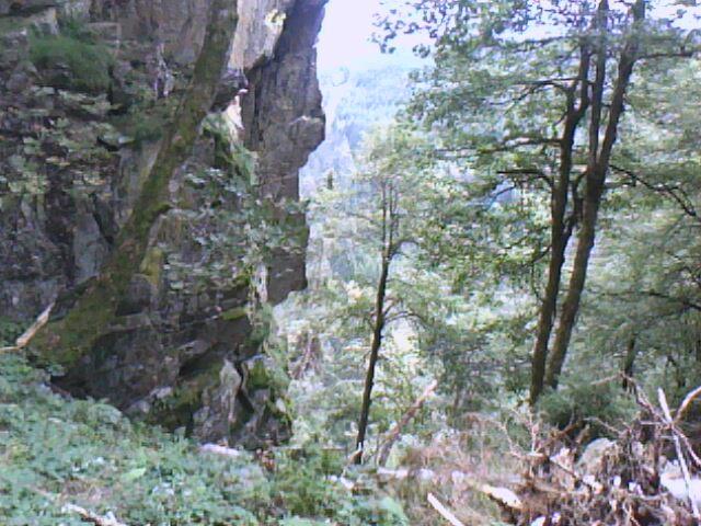 les rochers du Hirschsteine vus du haut du couloir (échelles) (Vosges)