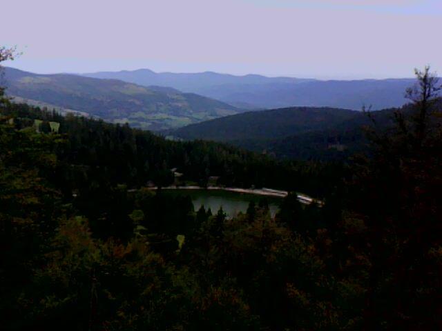 le lac vert en remontant vers les crêtes du Tanet (Vosgres)