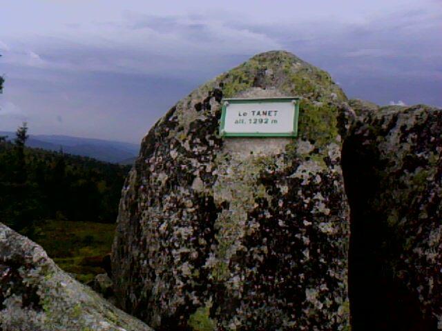 le sommet du rocher du Tanet (vosges)
