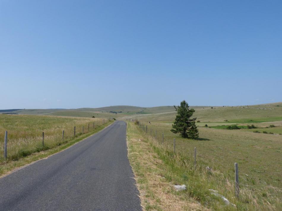 le vaste plateau du Causse méjean