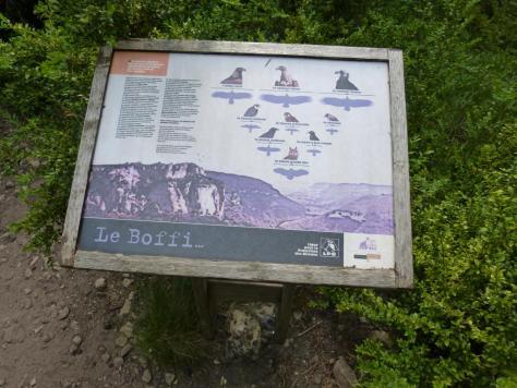 panneau d' info sur la faune volatile du Boffi