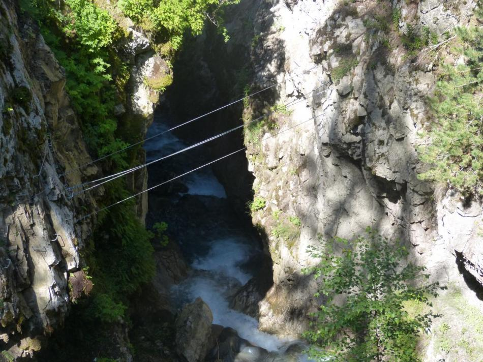 joli pont de singe en fin de parcours