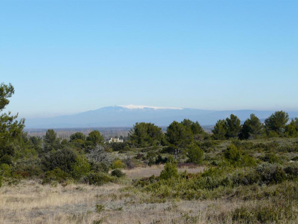 Tout proche et pourtant assez loin, le Mont Ventoux habillé de neige !