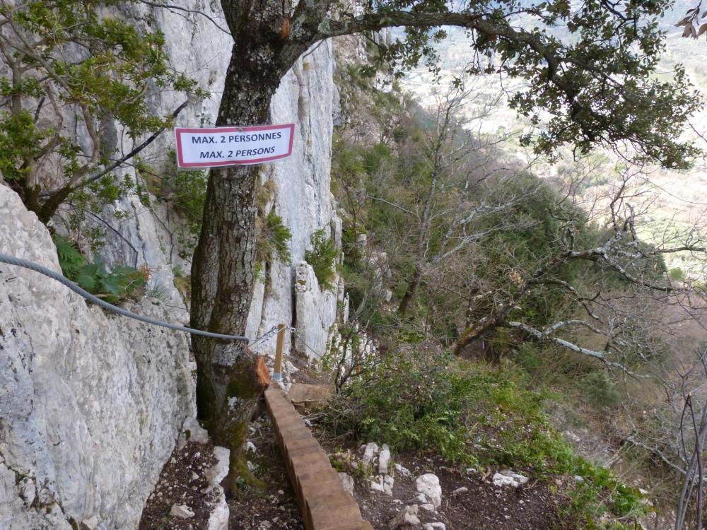Magnifique escalier taillé dans du bois brut ...bel ouvrage !