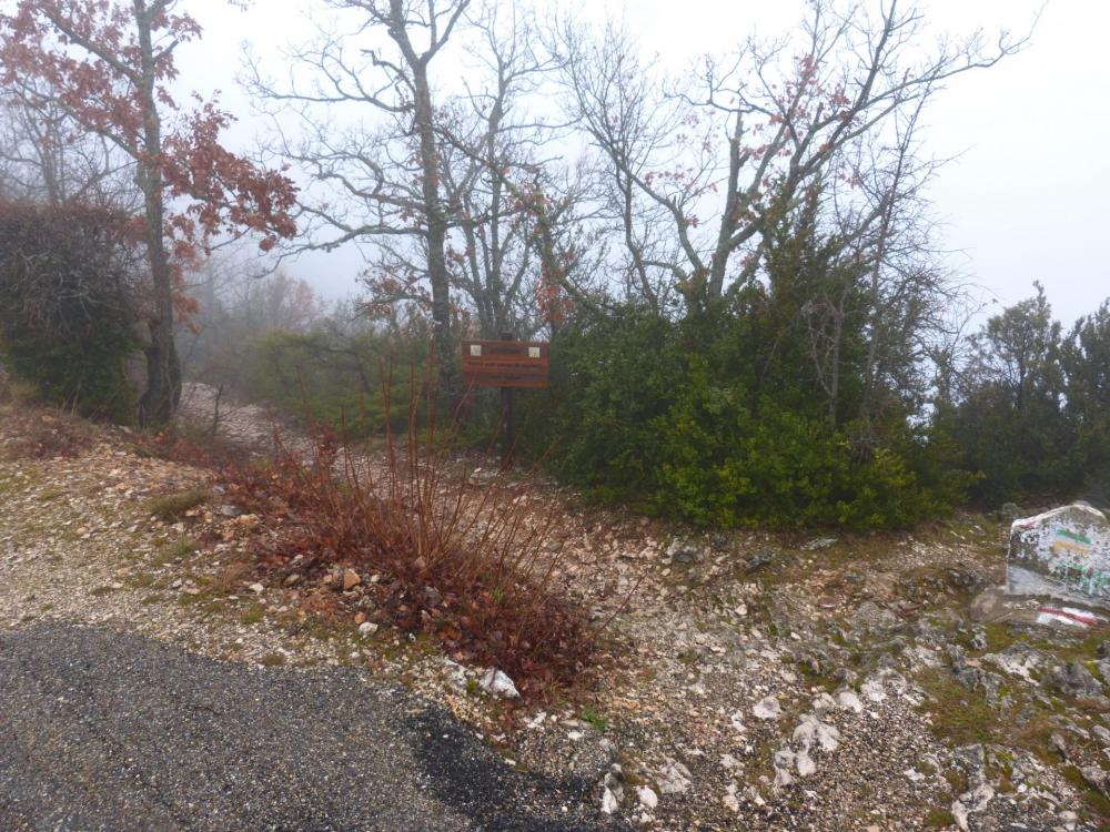 Juste à la traversée de la route, le sentier de descente vers les gorges de la Nesque