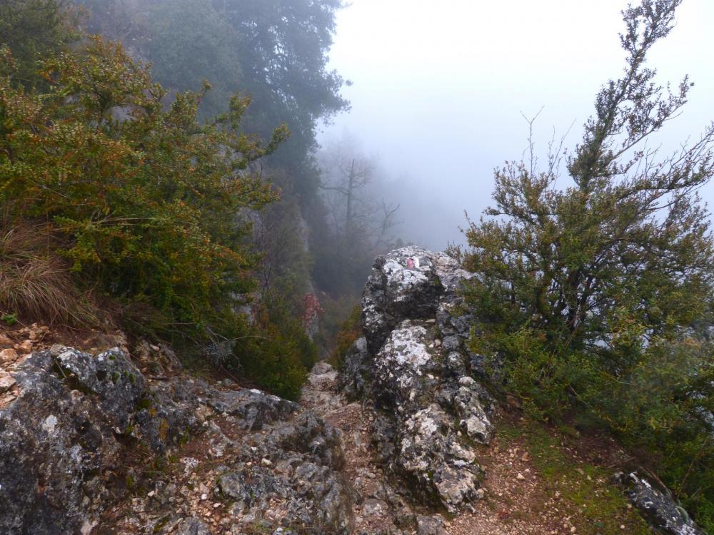 descente sportive dans les gorges de la Nesque et  ...le brouillard !