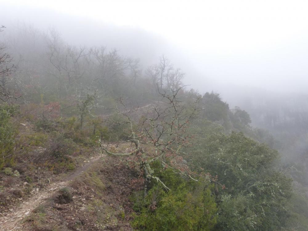 Sur le plateau opposé au dessus des gorges de la Nesque, le retour à gauche vers Monieux