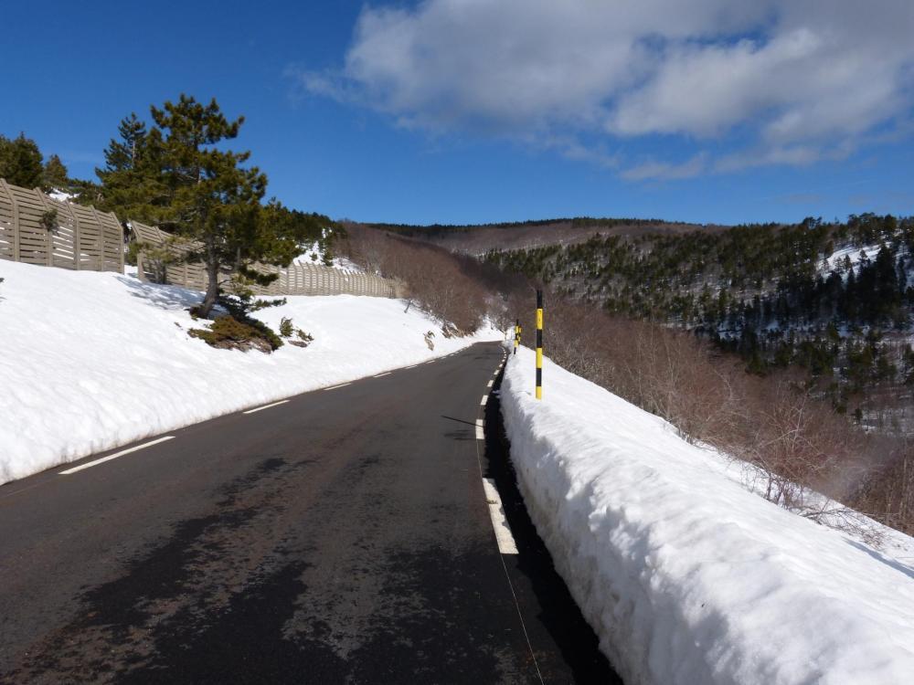 descente du mont Ventoux direction Sault à partir du chalet Reynard