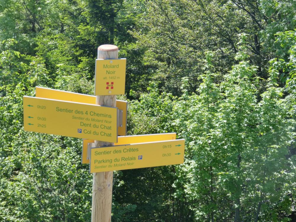 Direction le sentier des quatre chemins